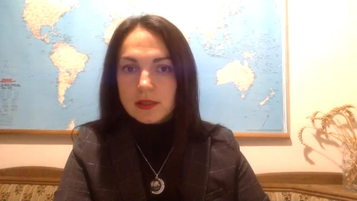 Ганна Гопко, народна депутатка України VІІІ скликання, голова Мережі захисту національних інтересів АНТС